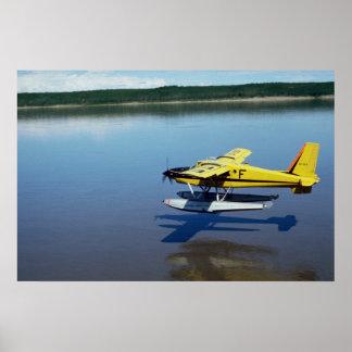 Castor, aterrizando en el río póster