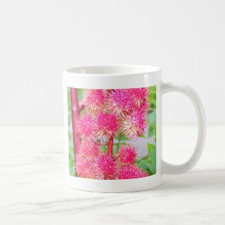 Castor Bean Pods Coffee Mug