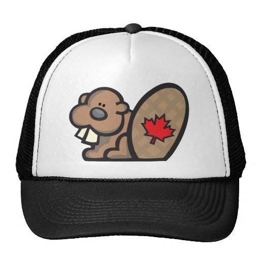 Castor Canadá Gorro