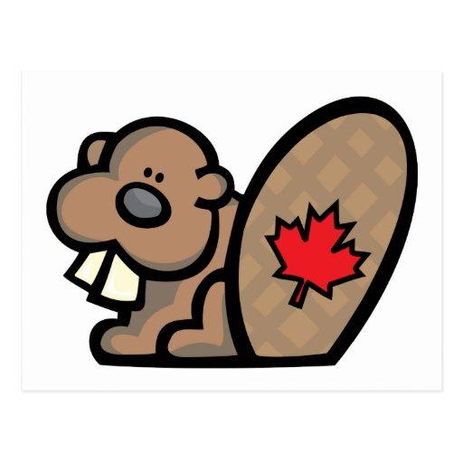 Castor canadiense postal