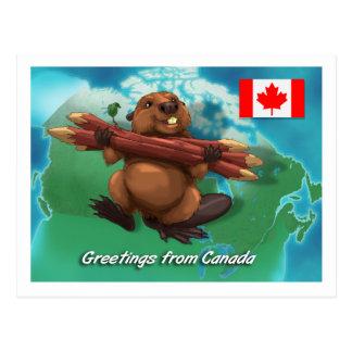 Castor canadiense postales