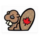 Castor canadiense tarjeta postal