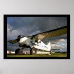 Castor de De Haveland DHC-2 Impresiones