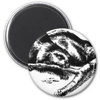Castor del vintage imán redondo 5 cm