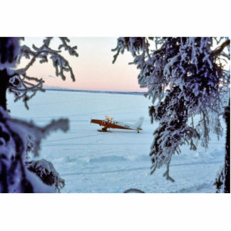 Castor N754 de la turbina en nieve Fotoescultura Vertical