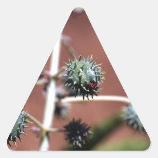 Castor Oil Plant Triangle Sticker