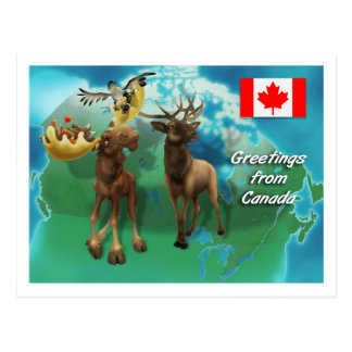 Castor y ganso canadienses de los alces de los postal