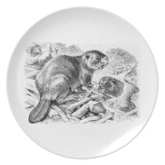 Castores y presa retros del ejemplo del castor del platos para fiestas