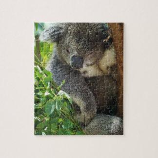 Casual Koala Puzzle