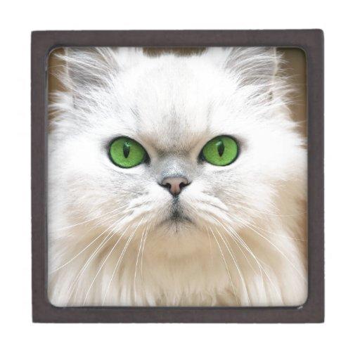 cat12.jpg cajas de recuerdo de calidad