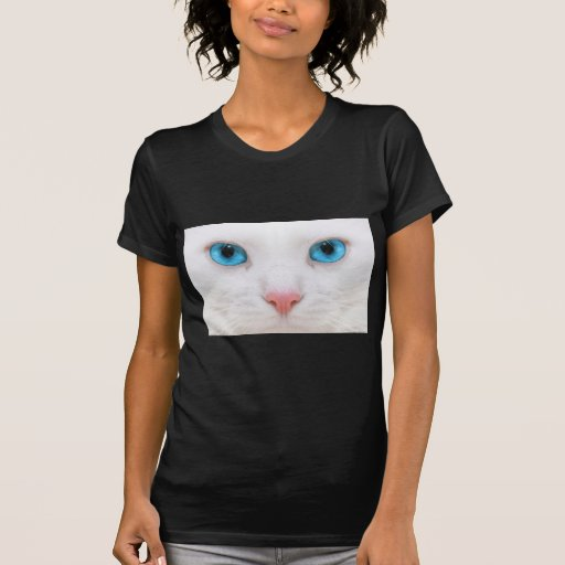 cat1.jpg camisetas