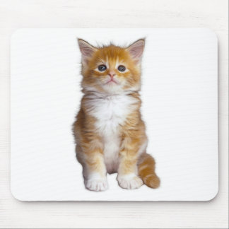 CAT1 MOUSE PAD