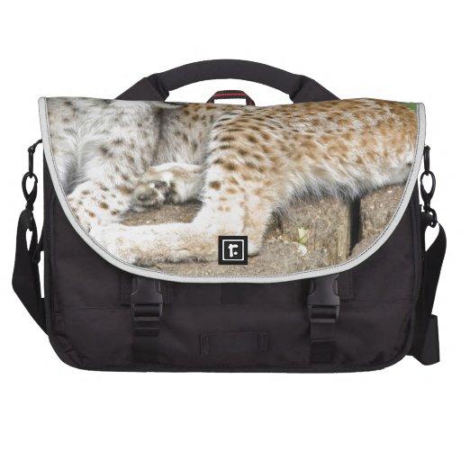 cat35.jpg laptop commuter bag