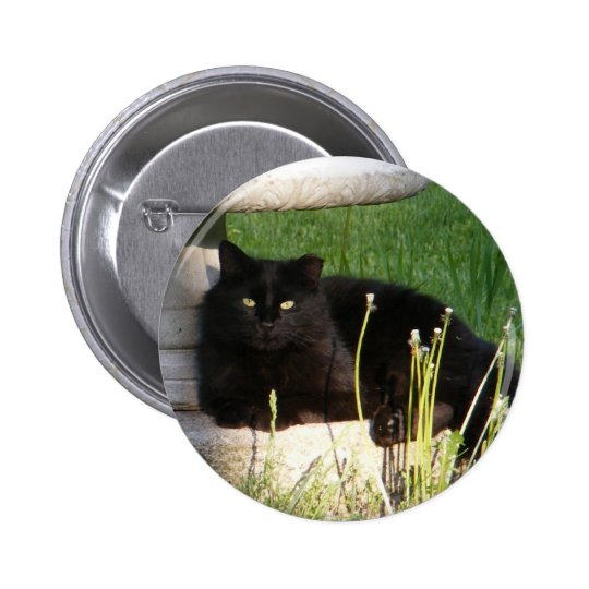Cat 120 ~ button