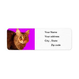 Cat 14 Return Address Label