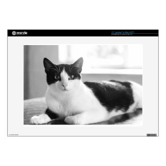 "cat 15"" laptop skin"