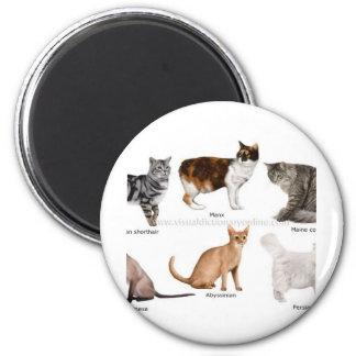cat 2 inch round magnet