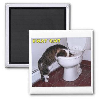 Cat 2 Inch Square Magnet