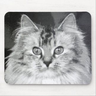 Cat 2 mouse pad