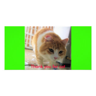 cat (2), Thank you for cat Photo Card Template