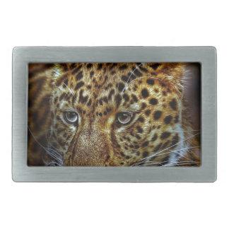 cat-301154  cat rauptier zoo wild animal portrait rectangular belt buckle