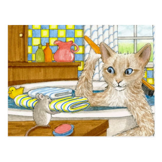Cat 345 postcard