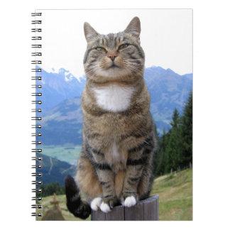 cat-369205  cat pet dear domestic cat spiral notebook