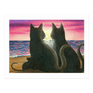 cat 434 Postcard