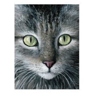 Cat 478 postcard