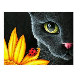 Cat 510 postcard