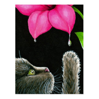 Cat 513 postcard