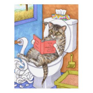 Cat 535 postcard