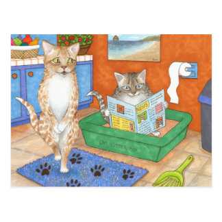 Cat 538 postcard