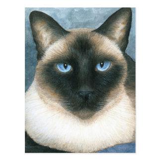 Cat 547 Siamese Postcard