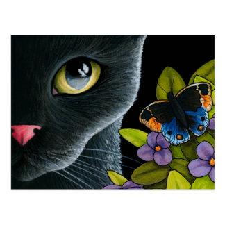 Cat 557 postcard