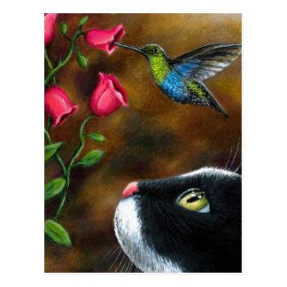 Cat 571 Tuxedo with Hummingbird Postcard