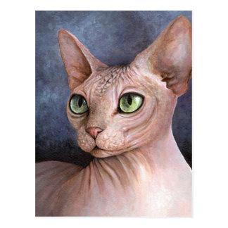 Cat 578 Sphynx Postcard