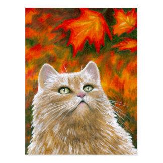 Cat 598 Persian Fall Autumn Postcard