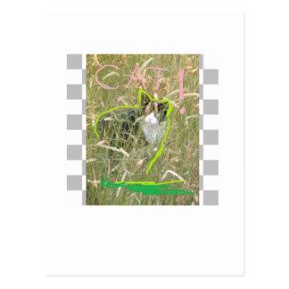 Cat 5 postcard