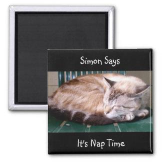Cat 7, It's Nap Time, Simon Says, Magnet