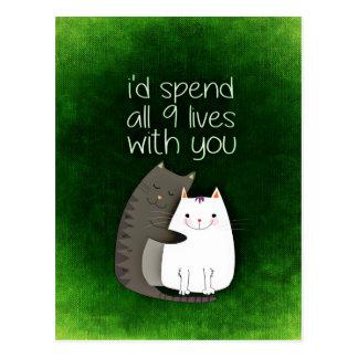 cat-859033.jpg postcard