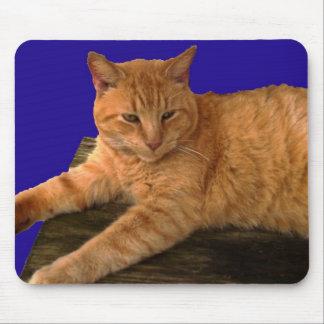 Cat 8, Mouse Pad