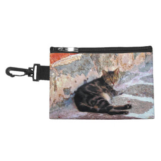 Cat Against Stone Accessory Bags