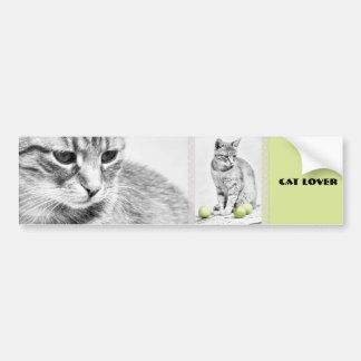 Cat and Apples Bumper Sticker