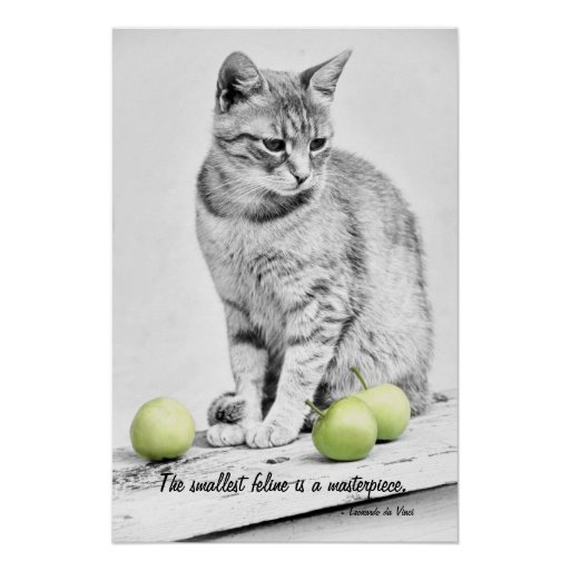 Cat and Apples Poster
