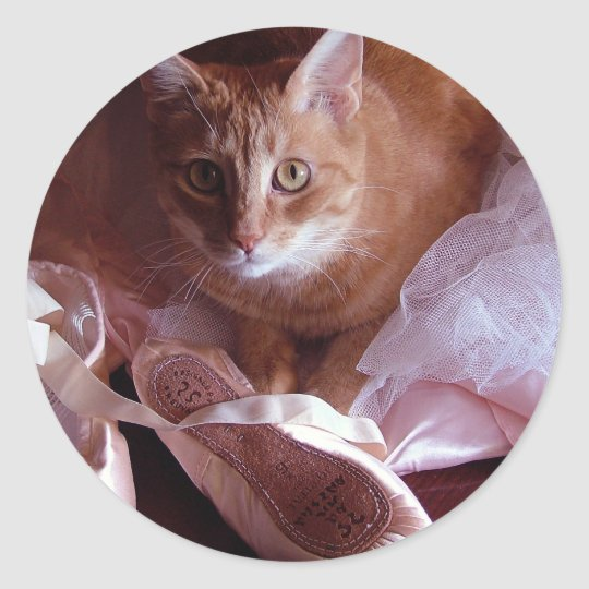 Cat and Ballet Slippers Classic Round Sticker