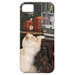 Cat and bird iPhone 5 cover