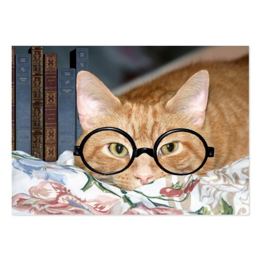 Cat and books ACEO Large Business Cards (Pack Of 100)
