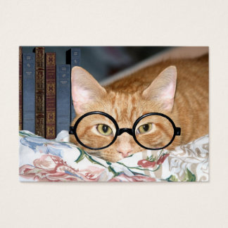 Cat and books ACEO Business Card