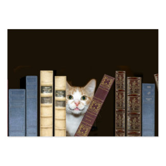 Cat and books large business cards (Pack of 100)